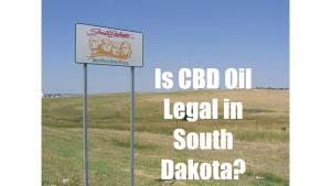 thc oil south dakota