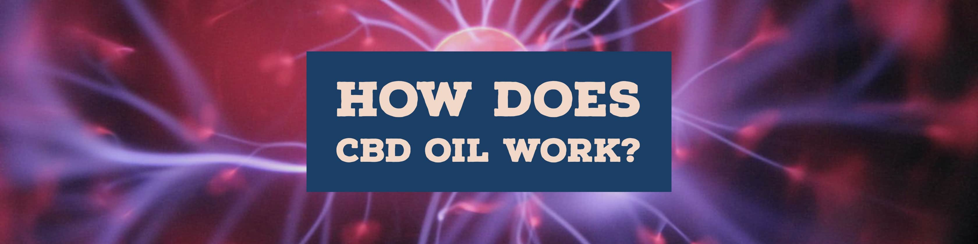 How-Does-CBD-Oil-Work-Thumbnail